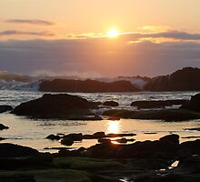 Sunset At Seal Rock by Annie Underwood