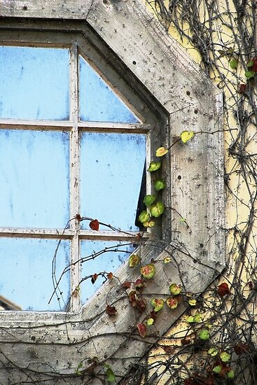 Framed Autumn Blue by Ellen Cotton