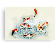 Koi carp (Nishikigo) (Chinese brush art) Canvas Print