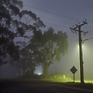 Fog by sedge808