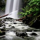 Hopetoun Falls II by Bevlea Ross