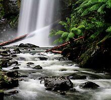 Hopetoun Falls II by Bevlea Ross
