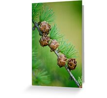 Nature's Abstract 6 Greeting Card