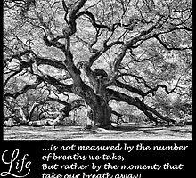 Take my Breath Away by Marcelene McCowan
