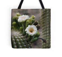 Magnificant Bloom of the Saguaro  Tote Bag