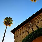 Stanford University  by VincenzoL