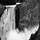 Yellowstone - Black and White Canyon by Kaitlin Kelly