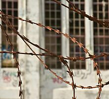 Protected by Razor Wire by pennyswork
