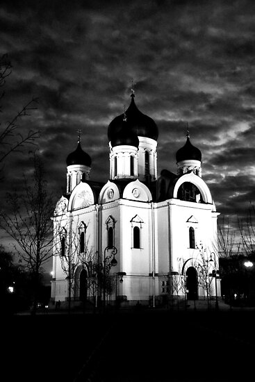 Old New Cathedral by Sergey Kireev