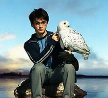 Harry Potter and Hedwig by NicksChick