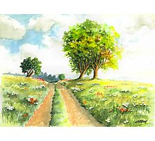 LANDSCAPE WITH COUNTRY ROAD Photographic Print