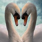 Swan Love iPhone/iPod Case by Carol Bleasdale