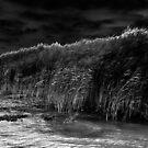 Midnight wind by borjoz