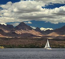 Sailing In Havasu by James Eddy