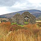 Miner House Ruins in Wicklow Mountains, Ireland. by Raymond Doyle