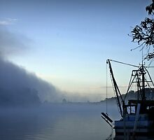 Misty Morning on the Clarence River by myraj