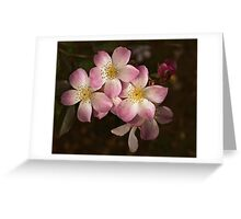 Lyda Rose, oh won't you be mine? Greeting Card