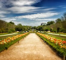 Jardin Des Plantes Gardens, Paris (2) by Ali Brown