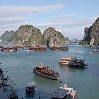 Halong Bay 2, Vietnam by Jeff Symons