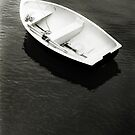 Moored Rowing Boat  by Richard Flint