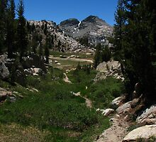 West of Benson Pass, Pacific Crest Trail, CA 2012 by J.D. Grubb