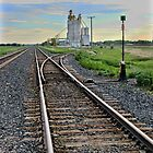 Prairie Rails by Marcelene McCowan