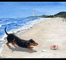 Dachshund on the Beach by dvampyrelestat