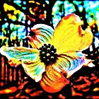 Stained Glass Dogwood by SenskeArt