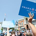 USA election 2012 by Federico Del Monte