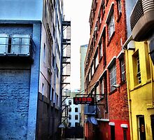 Beauty in the back alley by Jono Le Feuvre