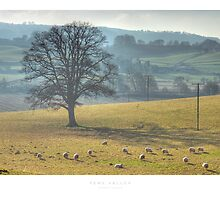 Teme Valley by Andrew Roland