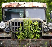 The Grass-eating Truck by Gisele Bedard