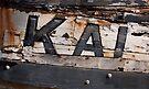 KAI by Alex Preiss
