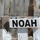 Noah's Shabby Chic Barn Sign by KelseyGallery