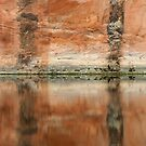 Red Rock Reflections by KelseyGallery
