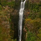 Carrington Falls ... framed by Michael Matthews