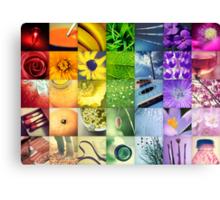A Year of Colour Canvas Print