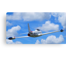 Faux Flight - Shooting Star Canvas Print