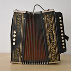 Hohner Accordion by Ana  Eugénio