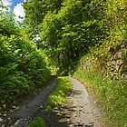 The Road From Ickenthwaite by Jamie  Green