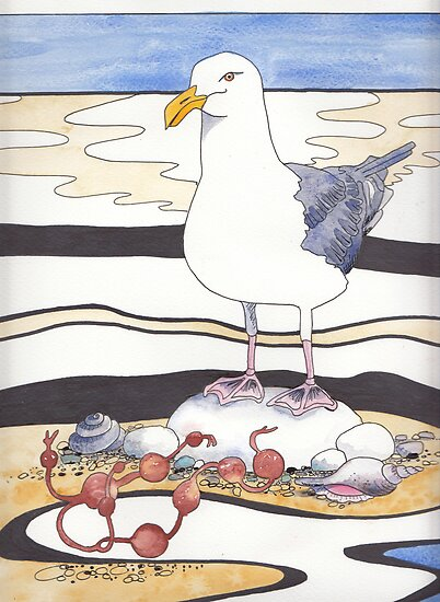 Gull by Val Spayne
