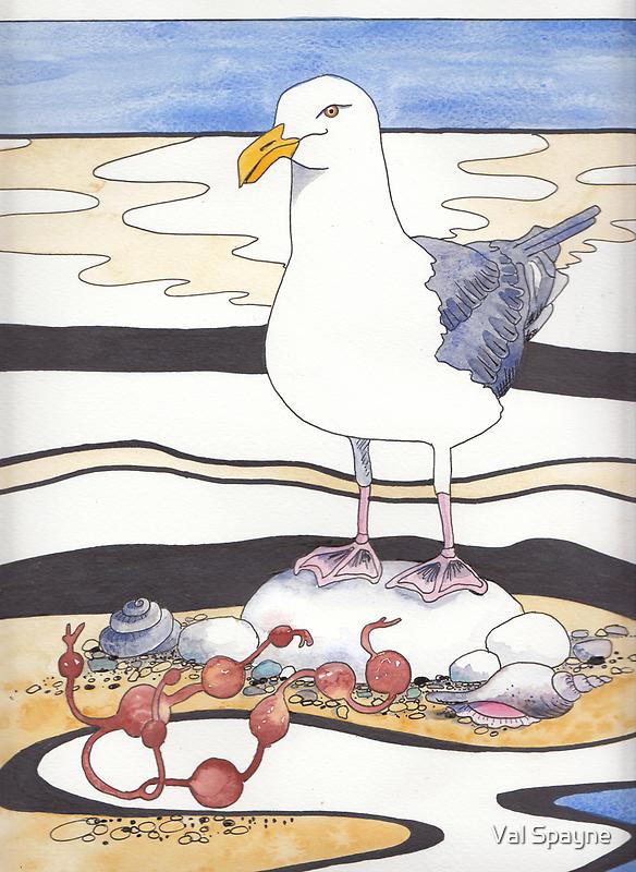 Gull by Val Spayne