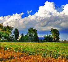 Composition With Farm And Clouds by EBArt