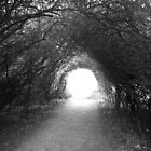 Light tunnel by reaperwithaplan