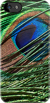 Iridescent plumage-iPhone by Celeste Mookherjee