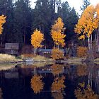 Lakeside Cabin by Gina J