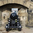 Cannon on display at Edinburgh Castle by ashishagarwal74