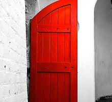 The Red Door by f13 Gallery