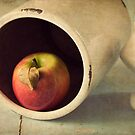 An Apple a Day... by Amy Weiss