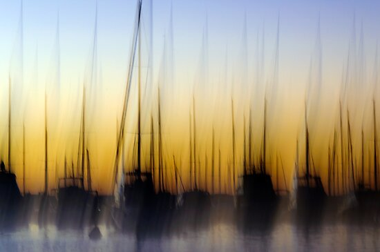 Matilda Bay Abstract by Ladyshark